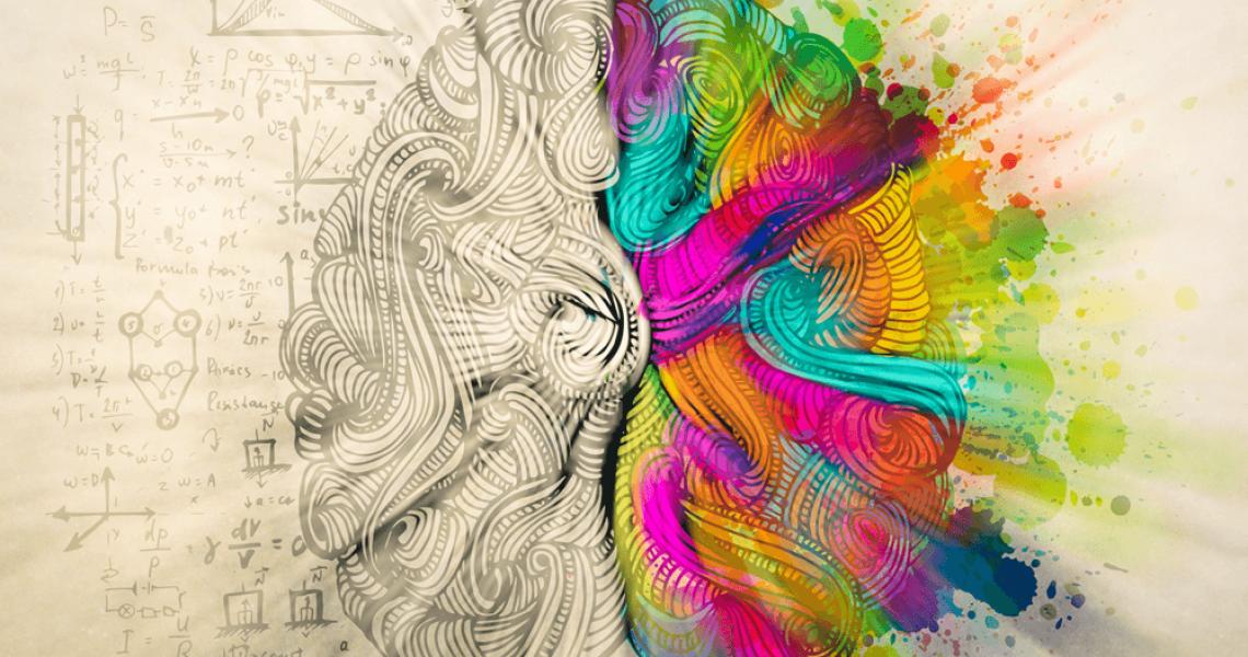 The NOW meditation Brain Neuroscience